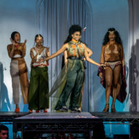 R.E.V: Controversy Collection Seeks Runway Slot